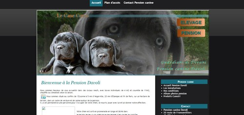 Pension canine davoli